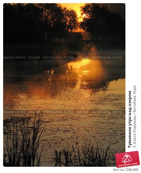 Купить «Туманное утро над озером», фото № 236649, снято 20 сентября 2007 г. (c) Ольга Хорькова / Фотобанк Лори