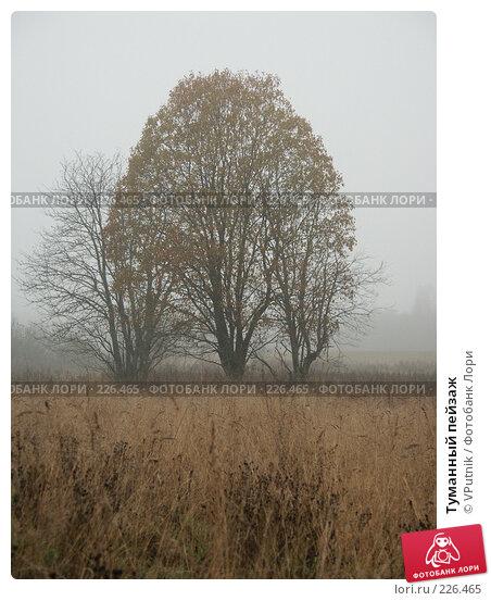 Туманный пейзаж, фото № 226465, снято 21 октября 2006 г. (c) VPutnik / Фотобанк Лори
