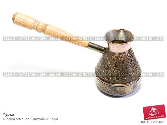 Купить «Турка», фото № 266645, снято 14 сентября 2007 г. (c) паша семенов / Фотобанк Лори