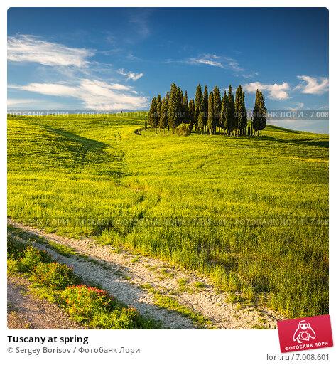 Купить «Tuscany at spring», фото № 7008601, снято 9 мая 2014 г. (c) Sergey Borisov / Фотобанк Лори