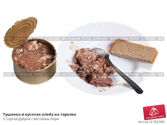 Купить «Тушенка и кусочек хлеба на тарелке», фото № 2153593, снято 21 ноября 2010 г. (c) Сергей Дубров / Фотобанк Лори
