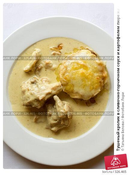 Тушеный кролик в сливочно-горчичном соусе и картофелем пюре на белом блюде, фото № 326465, снято 13 июня 2008 г. (c) Татьяна Белова / Фотобанк Лори