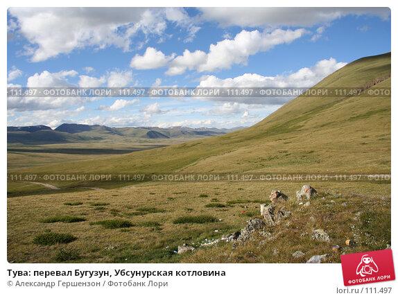 Тува: перевал Бугузун, Убсунурская котловина, фото № 111497, снято 26 июля 2006 г. (c) Александр Гершензон / Фотобанк Лори