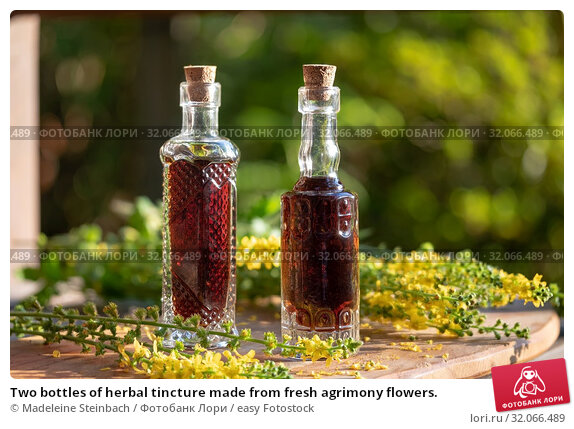 Two bottles of herbal tincture made from fresh agrimony flowers. Стоковое фото, фотограф Madeleine Steinbach / easy Fotostock / Фотобанк Лори