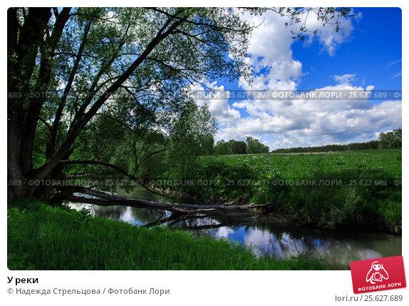 У реки (2016 год). Стоковое фото, фотограф Надежда Стрельцова / Фотобанк Лори