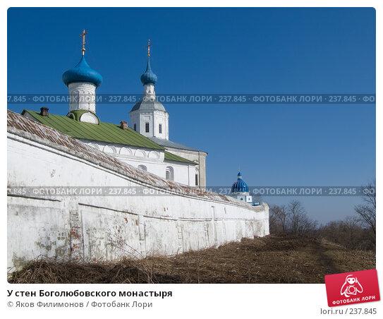 У стен Боголюбовского монастыря, фото № 237845, снято 23 сентября 2017 г. (c) Яков Филимонов / Фотобанк Лори