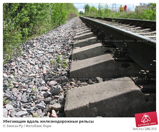Убегающие вдаль железнодорожные рельсы, фото № 286313, снято 13 мая 2008 г. (c) Заноза-Ру / Фотобанк Лори