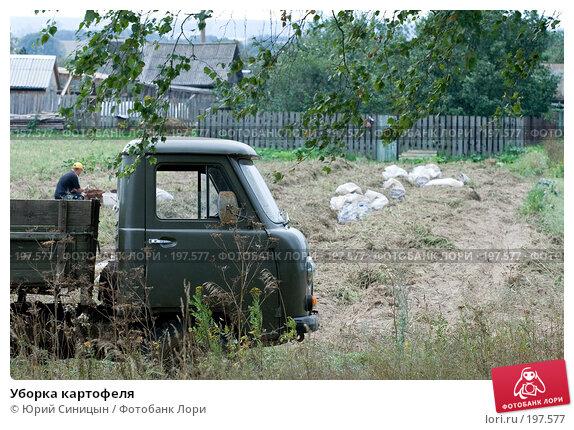 Купить «Уборка картофеля», фото № 197577, снято 26 августа 2007 г. (c) Юрий Синицын / Фотобанк Лори