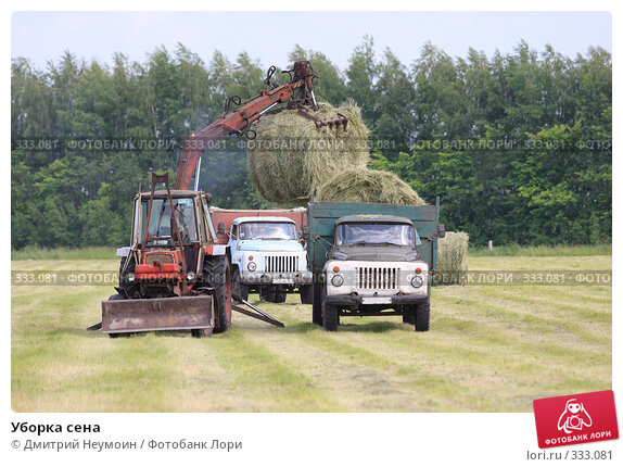 Уборка сена, эксклюзивное фото № 333081, снято 12 июня 2008 г. (c) Дмитрий Неумоин / Фотобанк Лори