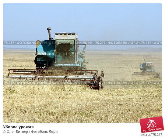 Уборка урожая, фото № 75217, снято 20 сентября 2005 г. (c) Олег Битнер / Фотобанк Лори