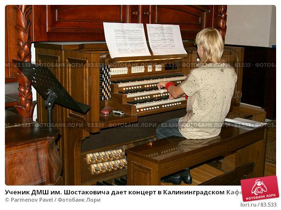 Ученик ДМШ им. Шостаковича дает концерт в Калининградском Кафедральном соборе, на синтезаторе Viscount Prestige 100, фото № 83533, снято 3 сентября 2007 г. (c) Parmenov Pavel / Фотобанк Лори