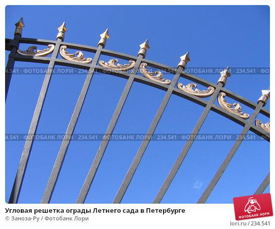 Угловая решетка ограды Летнего сада в Петербурге, фото № 234541, снято 24 июня 2006 г. (c) Заноза-Ру / Фотобанк Лори