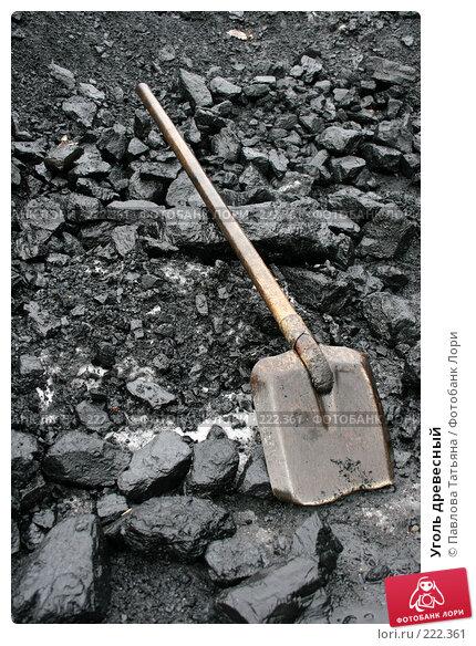 Уголь древесный, фото № 222361, снято 23 февраля 2008 г. (c) Павлова Татьяна / Фотобанк Лори
