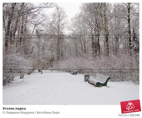 Уголок парка, фото № 226045, снято 16 февраля 2008 г. (c) Людмила Жмурина / Фотобанк Лори