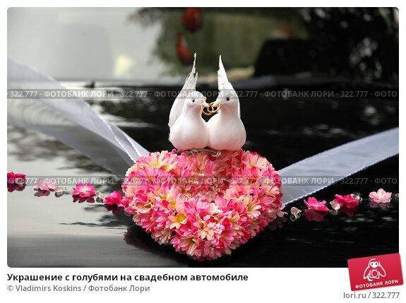 Купить «Украшение с голубями на свадебном автомобиле», фото № 322777, снято 29 сентября 2006 г. (c) Vladimirs Koskins / Фотобанк Лори