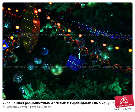 Украшенная разноцветными огнями и гирляндами ель в канун праздника Новый год, фото № 74781, снято 30 декабря 2006 г. (c) Parmenov Pavel / Фотобанк Лори
