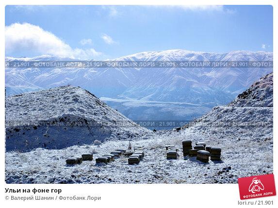 Ульи на фоне гор, фото № 21901, снято 21 ноября 2006 г. (c) Валерий Шанин / Фотобанк Лори
