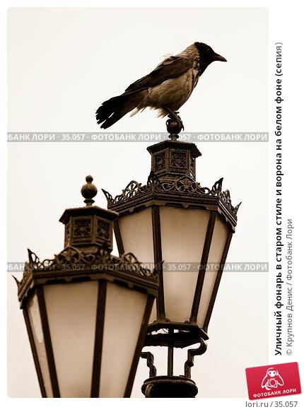 Уличный фонарь в старом стиле и ворона на белом фоне (сепия), фото № 35057, снято 23 марта 2007 г. (c) Крупнов Денис / Фотобанк Лори