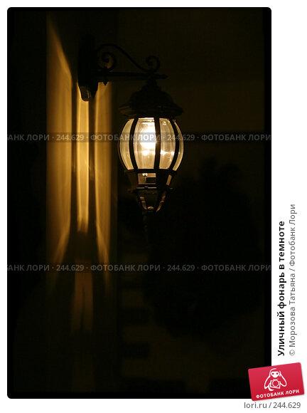 Уличный фонарь в темноте, фото № 244629, снято 21 сентября 2006 г. (c) Морозова Татьяна / Фотобанк Лори