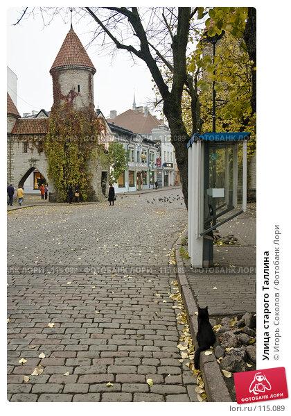 Улица старого Таллина, фото № 115089, снято 23 января 2017 г. (c) Игорь Соколов / Фотобанк Лори