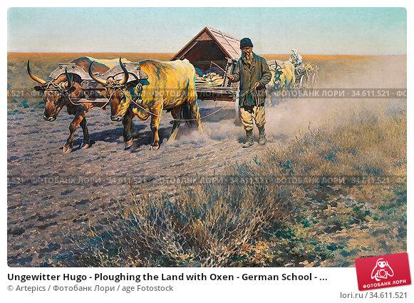 Ungewitter Hugo - Ploughing the Land with Oxen - German School - ... Редакционное фото, фотограф Artepics / age Fotostock / Фотобанк Лори