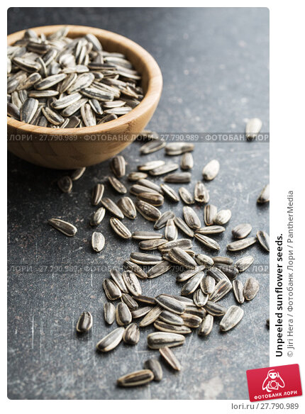 Купить «Unpeeled sunflower seeds.», фото № 27790989, снято 21 февраля 2018 г. (c) PantherMedia / Фотобанк Лори