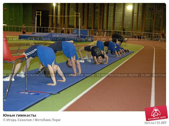 Юные гимнасты, эксклюзивное фото № 31097, снято 24 августа 2017 г. (c) Игорь Соколов / Фотобанк Лори