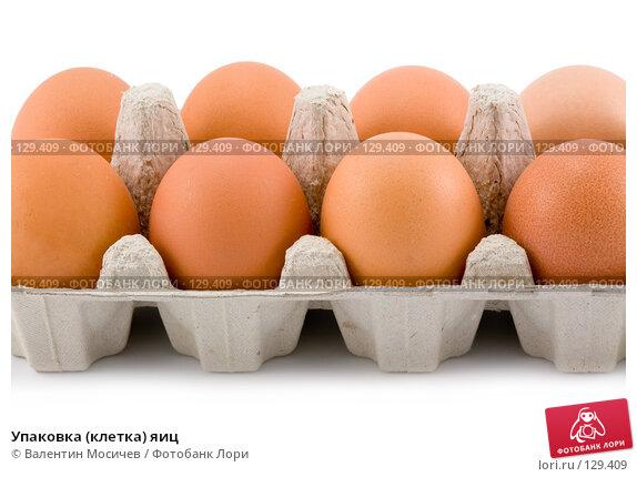 Упаковка (клетка) яиц, фото № 129409, снято 17 марта 2007 г. (c) Валентин Мосичев / Фотобанк Лори
