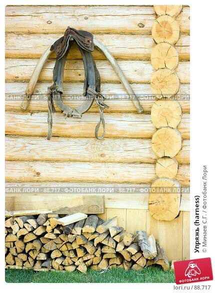 Упряжь (harness), фото № 88717, снято 20 июля 2007 г. (c) Минаев С.Г. / Фотобанк Лори