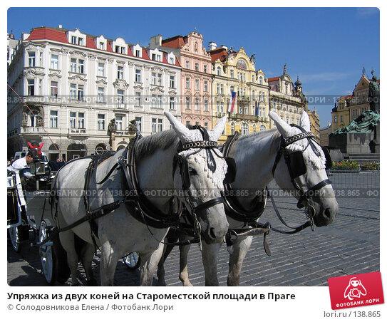 Упряжка из двух коней на Староместской площади в Праге, фото № 138865, снято 7 сентября 2004 г. (c) Солодовникова Елена / Фотобанк Лори