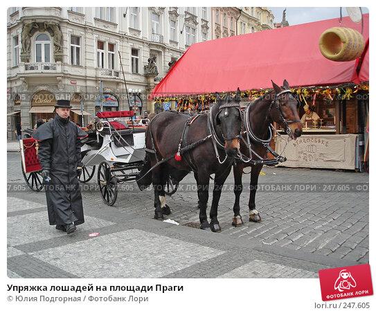 Упряжка лошадей на площади Праги, фото № 247605, снято 17 марта 2008 г. (c) Юлия Селезнева / Фотобанк Лори