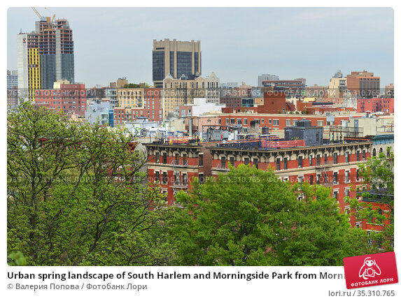 Urban spring landscape of South Harlem and Morningside Park from Morningside Drive in Morningside Heights. New York City (2019 год). Стоковое фото, фотограф Валерия Попова / Фотобанк Лори