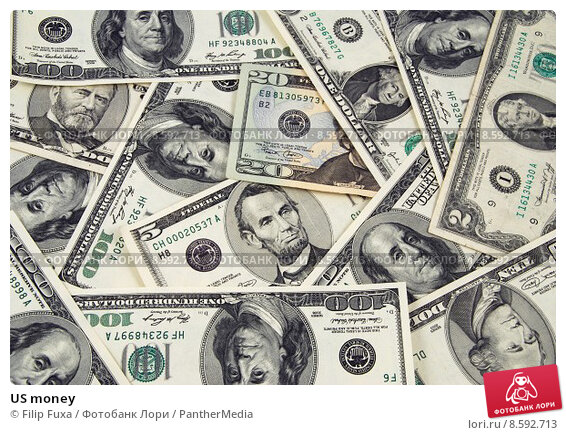 money in the usa Money in the 1920s and 1930s nowhere is monetary ignorance more apparent than in an analysis of these decades by richard h timberlake one.