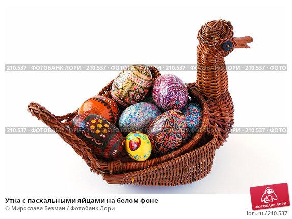 Утка с пасхальными яйцами на белом фоне, фото № 210537, снято 26 февраля 2008 г. (c) Мирослава Безман / Фотобанк Лори