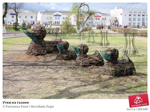 Купить «Утки на газоне», фото № 264049, снято 19 апреля 2008 г. (c) Parmenov Pavel / Фотобанк Лори