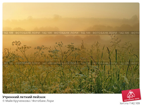 Утренний летний пейзаж, фото № 142109, снято 24 июня 2006 г. (c) Майя Крученкова / Фотобанк Лори