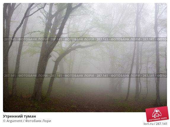 Утренний туман, фото № 287141, снято 29 апреля 2008 г. (c) Argument / Фотобанк Лори