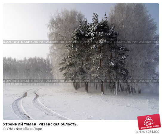 Купить «Утренний туман. Рязанская область.», фото № 234009, снято 21 марта 2018 г. (c) УНА / Фотобанк Лори