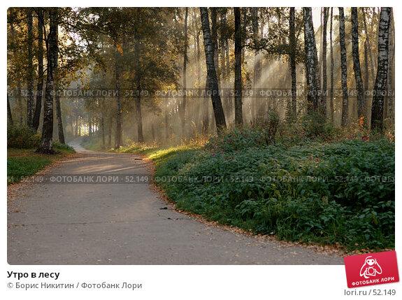 Утро в лесу, фото № 52149, снято 22 сентября 2006 г. (c) Борис Никитин / Фотобанк Лори