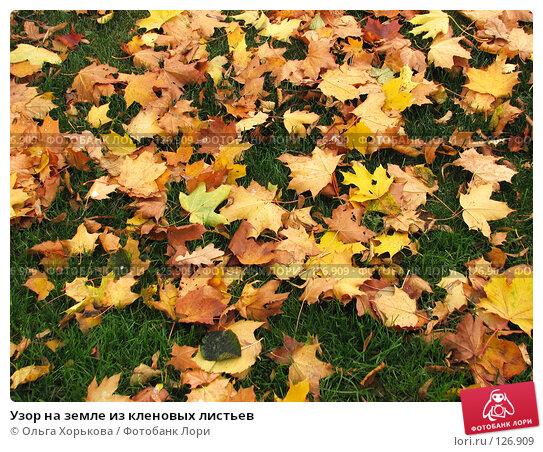 Узор на земле из кленовых листьев, фото № 126909, снято 11 октября 2007 г. (c) Ольга Хорькова / Фотобанк Лори