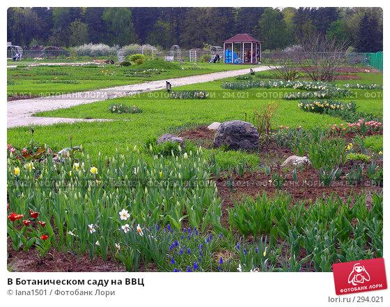Купить «В Ботаническом саду на ВВЦ», эксклюзивное фото № 294021, снято 1 мая 2008 г. (c) lana1501 / Фотобанк Лори