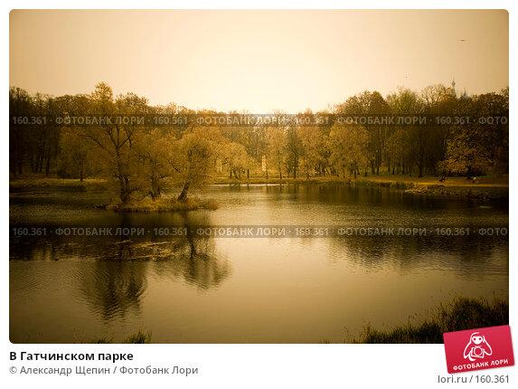 В Гатчинском парке, эксклюзивное фото № 160361, снято 28 октября 2007 г. (c) Александр Щепин / Фотобанк Лори