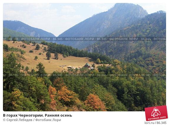 В горах Черногории. Ранняя осень, фото № 86345, снято 29 августа 2007 г. (c) Сергей Лебедев / Фотобанк Лори