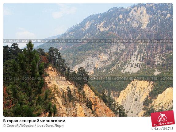 В горах северной черногории, фото № 84745, снято 29 августа 2007 г. (c) Сергей Лебедев / Фотобанк Лори