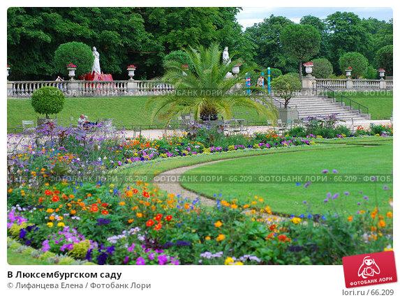 В Люксембургском саду, фото № 66209, снято 18 июня 2007 г. (c) Лифанцева Елена / Фотобанк Лори