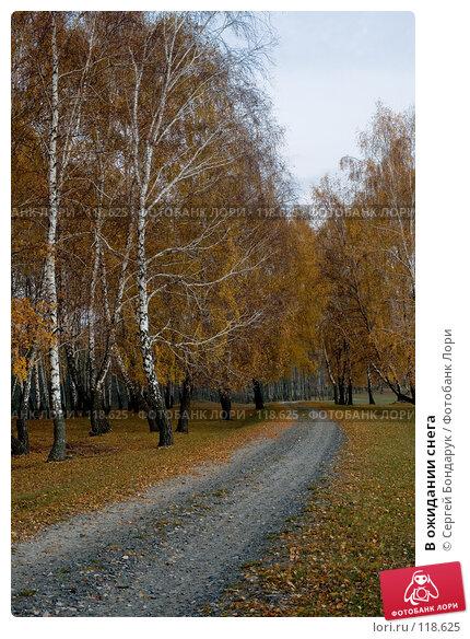 В ожидании снега, фото № 118625, снято 29 октября 2007 г. (c) Сергей Бондарук / Фотобанк Лори