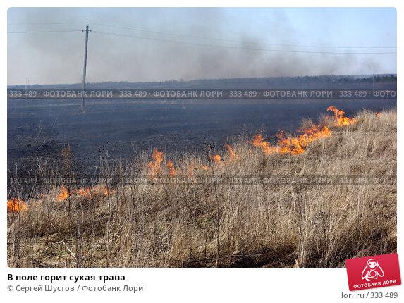 Купить «В поле горит сухая трава», фото № 333489, снято 20 апреля 2008 г. (c) Сергей Шустов / Фотобанк Лори