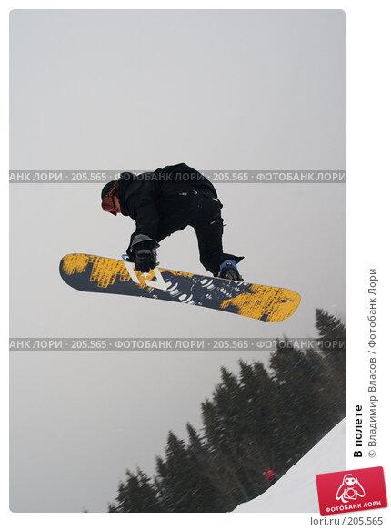 Купить «В полете», фото № 205565, снято 9 февраля 2008 г. (c) Владимир Власов / Фотобанк Лори
