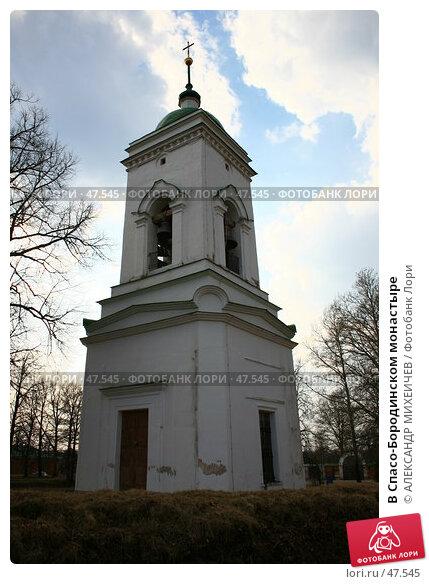В Спасо-Бородинском монастыре, фото № 47545, снято 31 марта 2007 г. (c) АЛЕКСАНДР МИХЕИЧЕВ / Фотобанк Лори