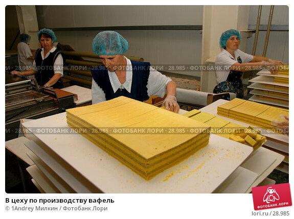 В цеху по производству вафель, фото № 28985, снято 19 июля 2006 г. (c) 1Andrey Милкин / Фотобанк Лори